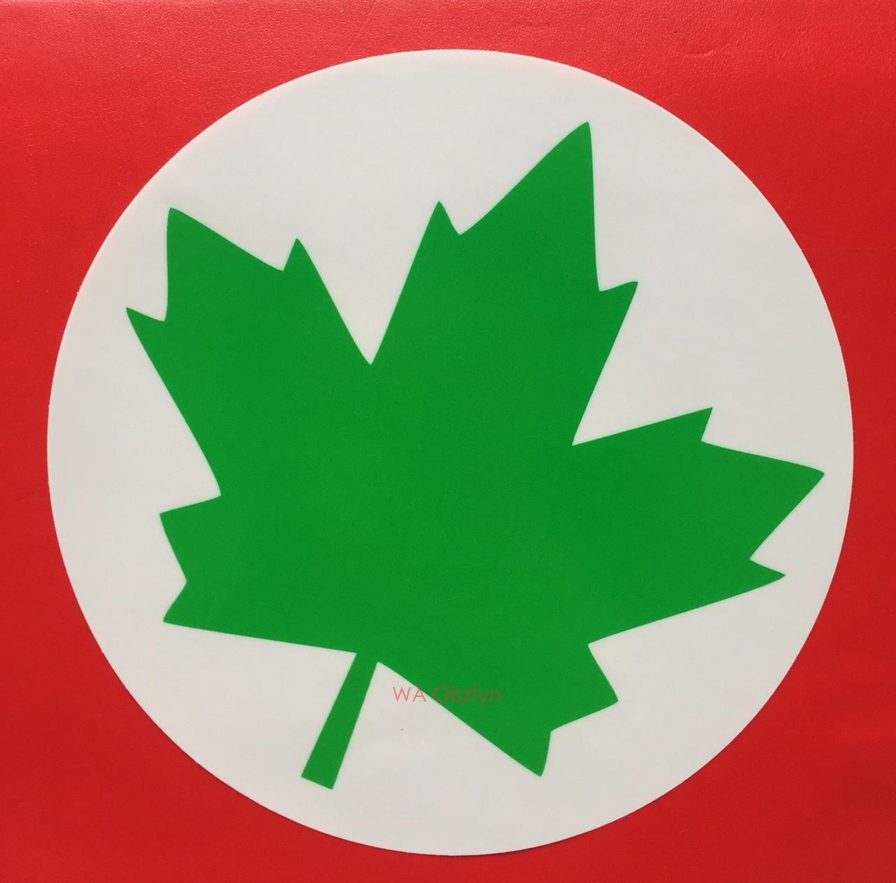 Zielony Listek Naklejka Dla Nowych Kierowcow